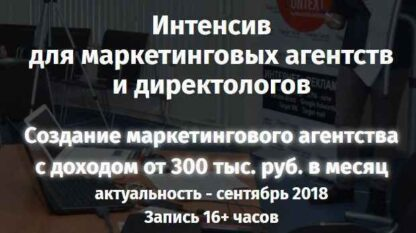 Создание маркетингового агентства с доходом от 300 тыс. руб. в месяц  скачать-Скачать за 200