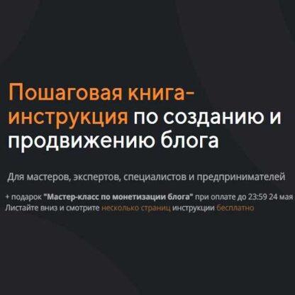 Пошаговая книга-инструкция по созданию и продвижению блога -Скачать за 200