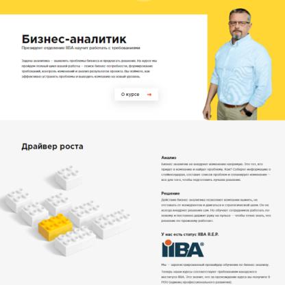 [Александр Белин] Бизнес-анализ -Скачать за 200