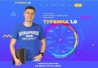 ПРИБЫЛЬНЫЙ БЛОГ на WordPress по системе «Турбина»-Скачать за 200