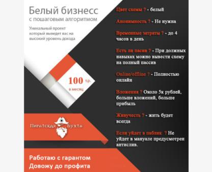 Платная схема белого заработка от 100к руб. в инстаграме-Скачать за 200