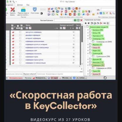 Скоростная работа в KeyCollector -Скачать за 200