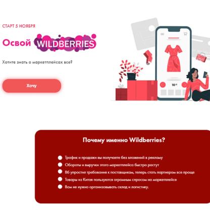 Освой Wildberries 2  [обновлённый]-Скачать за 200