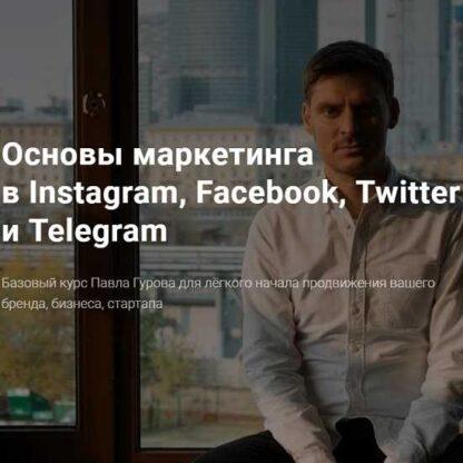 Основы маркетинга в Instagram, Facebook, Twitter и Telegram -Скачать за 200