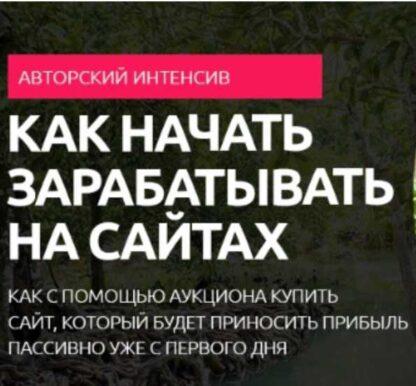 Новый источник дохода 2019-Скачать за 200