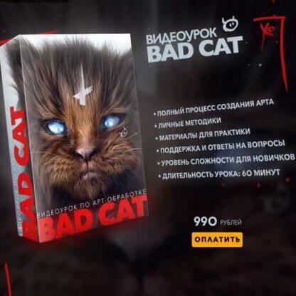 Bad Cat-Скачать за 200