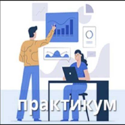 Инструментарий бизнес-аналитика: практикум  (2019)-Скачать за 200